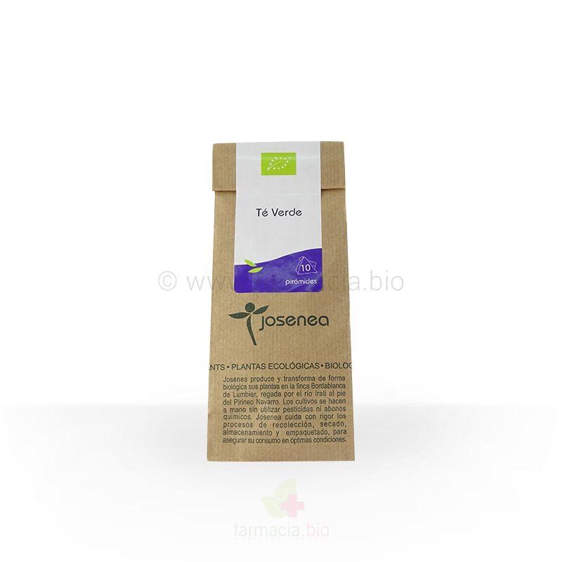 Infusión BIO té verde 10 u