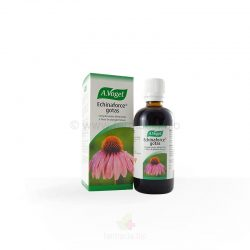 Echinaforce gotas 50 ml / 100 ml