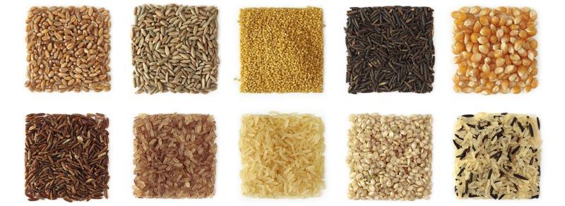 Cereales. granos,... Proteína vegetal