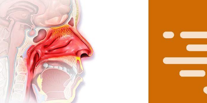 Tratamiento para la rinitis